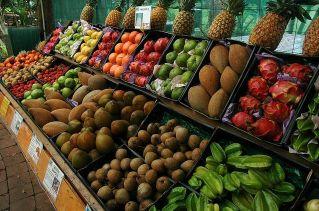Antioxidant Definition