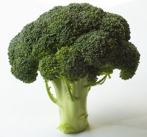 Broccoli Juicer Recipes