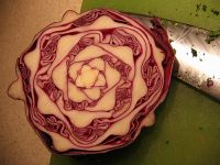 Cabbage Juicer Recipes