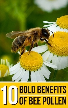 health-benefits-of-bee-pollen